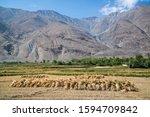 view in wakhan corridor in... | Shutterstock . vector #1594709842