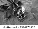 Small photo of Scary silver human scull on the sand