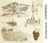 vineyard, rural landscape - hand drawn illustration