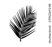 silhouette of a palm leaf....   Shutterstock .eps vector #1596264148