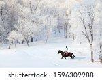Equestrian Sportive Girl Ridin...