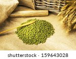 green beans on the burlap with... | Shutterstock . vector #159643028