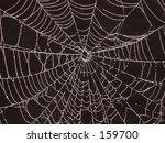 spider web | Shutterstock . vector #159700