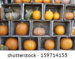 A Colorful Display Of Pumpkins...
