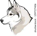 siberian husky | Shutterstock .eps vector #159727406