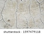 white cracked paint with gray... | Shutterstock . vector #1597479118