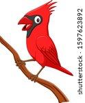 Cartoon Cardinal Bird On Tree...