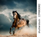 Stock photo wild stallion in dust 159883082