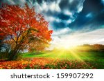 autumn  fall landscape in park. ... | Shutterstock . vector #159907292
