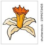 Vector Floral Illustration Wit...
