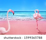 Pink Flamingo Birds Stand On...