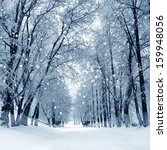 snowstorm in park  winter... | Shutterstock . vector #159948056