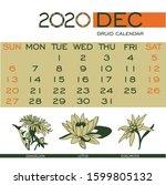 Druid Floral Calendar December...