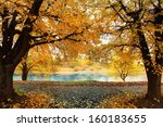 autumn park with yellow leaves  ... | Shutterstock . vector #160183655