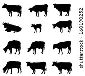 Cow Set. Livestock Silhouettes...