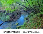 Scenery Of Oike Spring Waters...