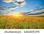 field with green grass and red... | Shutterstock . vector #160205195