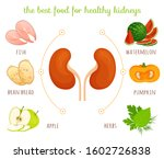 the best food for healthy... | Shutterstock .eps vector #1602726838