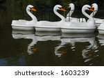 Swan Boats And Reflections  ...