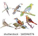 painted watercolor flowers   Shutterstock . vector #160346576
