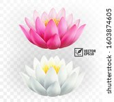 3d realistic vector pink and... | Shutterstock .eps vector #1603874605