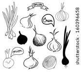 onions sketch set in black and...