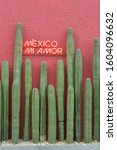 """Small photo of Wall adorned with huge cactus and neon sign where """"Mexico my love"""" is located on the Polanco street in Mexico City"""