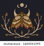 eyed hawk moth colored... | Shutterstock . vector #1604541595