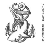 emblem of shark and anchor in... | Shutterstock . vector #1604865742