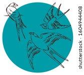 Logo Bird In Line Art Style....