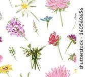 garden flowers  seamless... | Shutterstock .eps vector #160560656