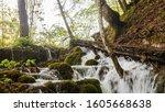 Plitvicka Lakes National Park ...