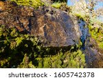 Humid Rock Face Partially...