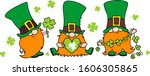 St. Patrick's Day Irish Gnomes...
