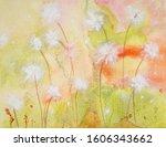 Dandelion Seeds In The Wind....