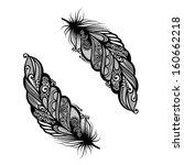 peerless decorative feather ... | Shutterstock . vector #160662218