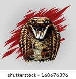 cobra snake head. vector illustration - stock vector