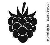 fruit raspberry icon. simple... | Shutterstock .eps vector #1606914928