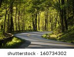 A Winding Road In The Mountain...