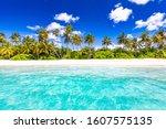 Beach Nature Concept. Palm...