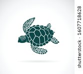 Vector Of Turtle Design On A...