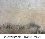 the fungus on the white walls...   Shutterstock . vector #1608329698