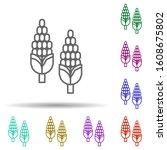 corn  plant multi color style...