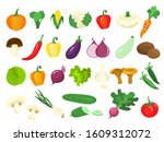 set of vegetables. fresh... | Shutterstock . vector #1609312072