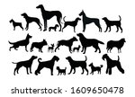 set of diverse dog icons   Shutterstock .eps vector #1609650478