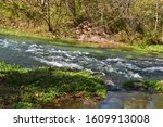 Waters From Welch Spring Join...