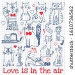 cat doodle happy valentine's... | Shutterstock .eps vector #1610736562