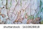abstract rustic concrete indoor ... | Shutterstock . vector #1610828818