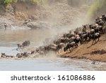 migratory blue wildebeest ... | Shutterstock . vector #161086886