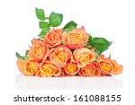 Orange Roses On White Background